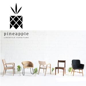 Pineapple-emailblast
